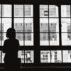 NHKクローズアップ現代で50代から孤独死に備える女性たちを取材